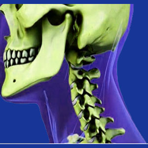 neck pain facts