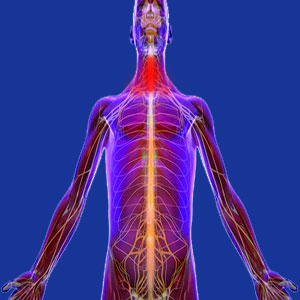 Cancer neck pain
