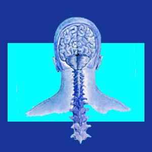 Meningitis neck pain